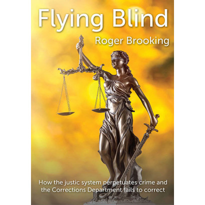 Flying Blind: How the Justice System Perpetuates Crime