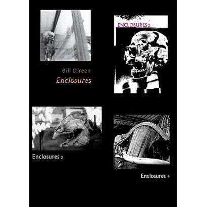 Enclosures, by Bill Direen (Fiction)