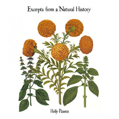 Excerpts from a Natural History, by Holly Painter (Fiction)