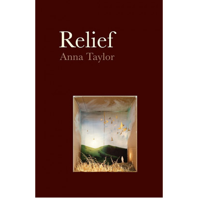 Relief, by Anna Taylor (Fiction & Literature)