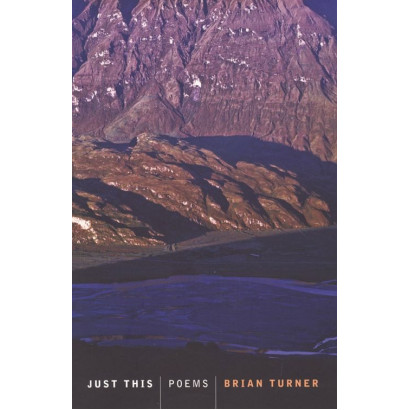 Just This, by Brian Turner (Fiction & Literature)