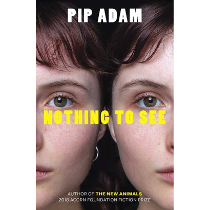 Nothing To See, by Pip Adam (Fiction)