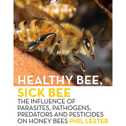 Healthy Bee, Sick Bee, by Phil Lester (Science & Natural History)